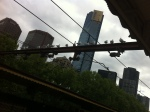 Seagulls on a wire at Flinder's St Station. The Eureka Tower is in the background.